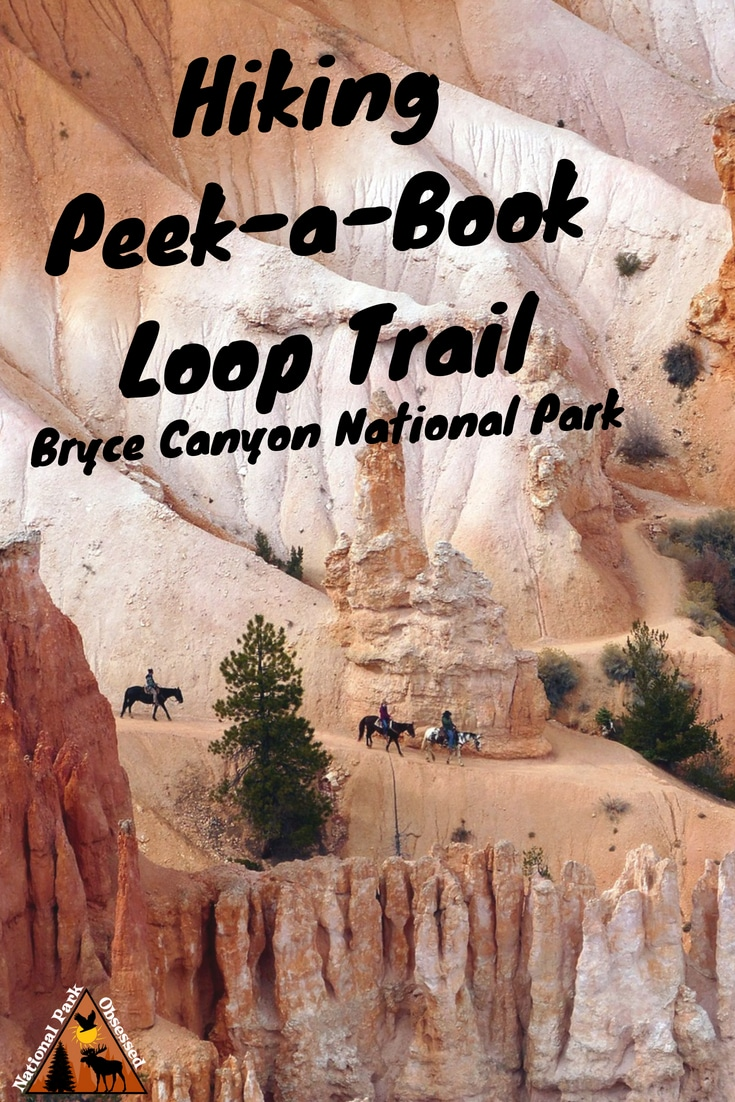 Looking to get a closer look at the #hoodoos of Bryce Amphitheater?  Hike the Peek-a-Boo Loop Trail for an amazing look a @BryceCanyonNPS hoodoos. 