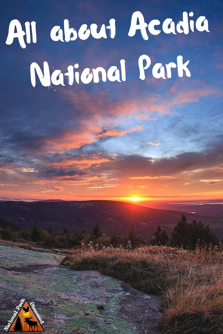 Planning to visit @AcadiaNPS? Don\'t know where to start. Let #NationalParkObsessed help you plan your trip to #Acadia with guides, itineraries, things to know and much much more.
