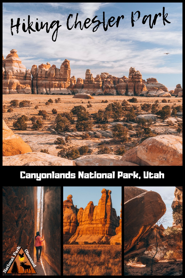 Heading down the Needles District of Canyonlands National Park?  Trying to decide which trail to hike?  Chesler Park Loop Trail is an excellent trail to check out the sights.    #canyonlandsnps #canyonlands #utah #mighty5 #mightfive #utahparks #findyourpark #nationalparkgeek #nationalparkobsessed