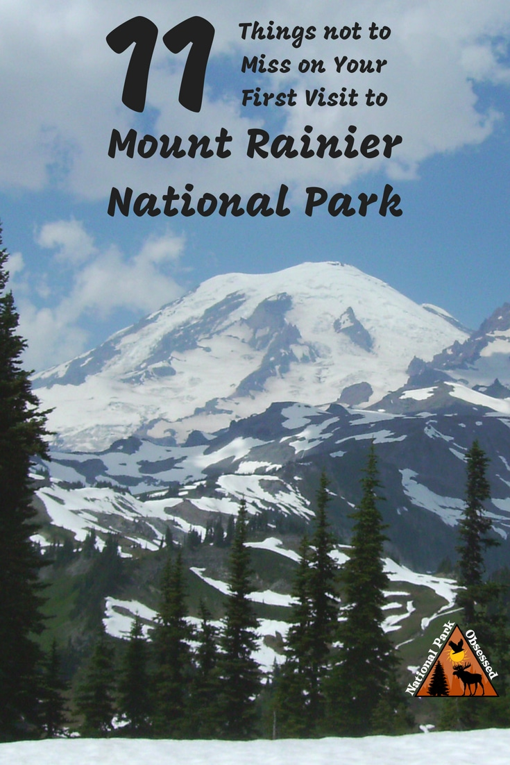 Planning your first visit to Mount Rainier? Here are 11 things not to miss on your first visit to Mount Rainier National Park. Includes waterfalls, wildflowers, hiking, and glaciers.    #findyourpark #mountrainier #nationalparkobsessed #mountrainiernationalpark #nationalparkgeek