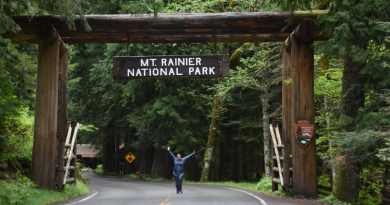 11 Things not to Miss on Your First Visit to Mount Rainier National Park