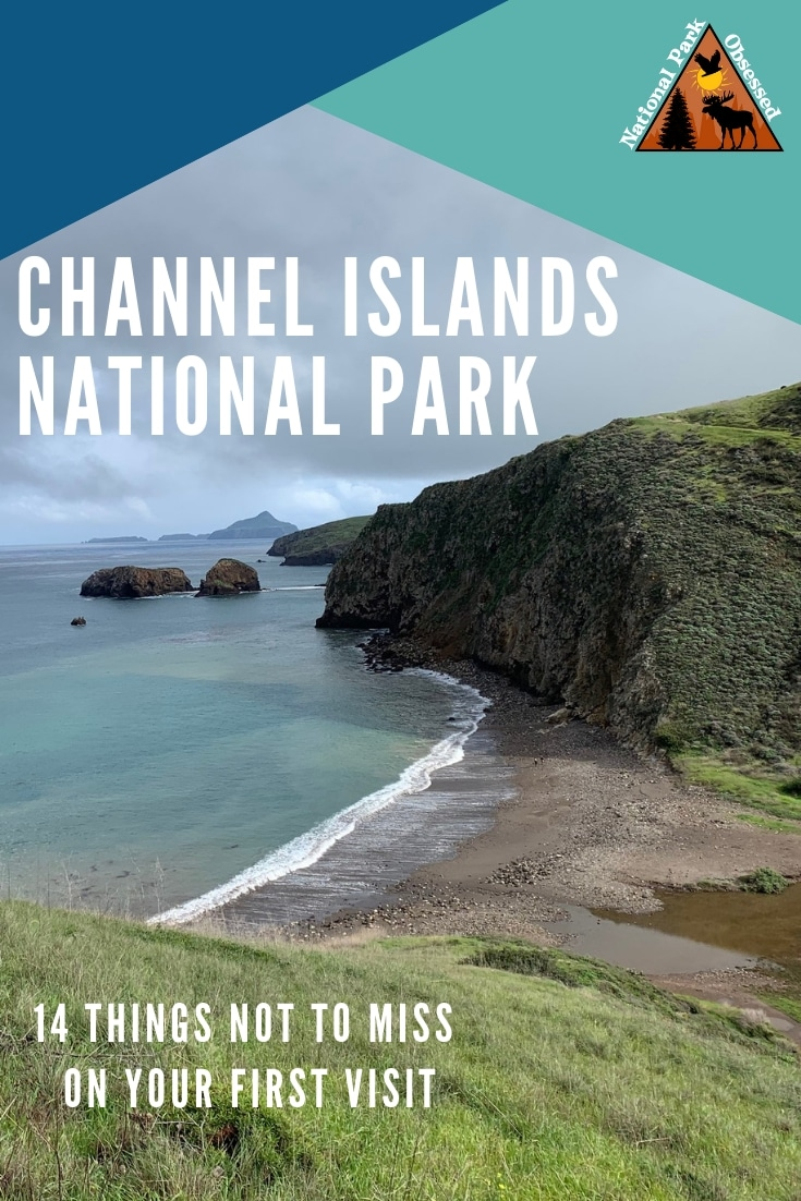 Heading out to your first visit to Channel Islands? Wondering which island? Here are 14 things not to miss on your first visit to Channel Islands National Park.  #channelisland #channelislandnps #nationalparks #nationalpark #nationalparkgeek #findyourpark #nationalparkobsessed #califorina #the59parks