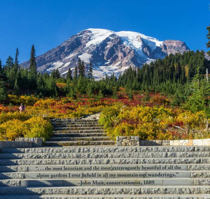 Mount Rainier with fall colors