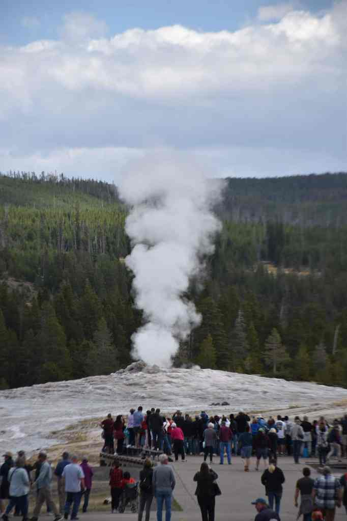 A huge crowd of people wait for Old Faithful to erupt
