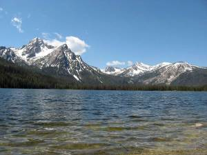 mountain and lakes dog info and rules