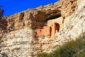 dog info and rules montezuma castle national monuments