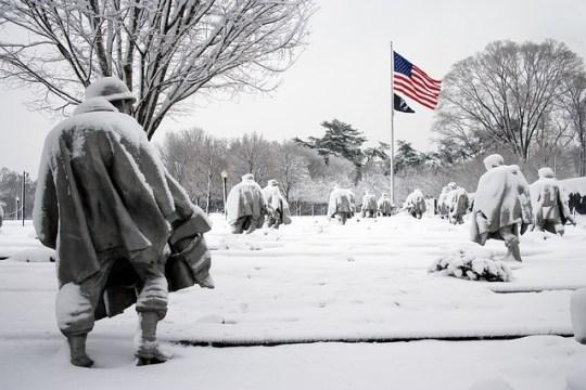 dog info and rules korean war memorial Monument