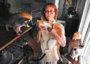 The Crazy Cat Lady Will Soon Be Classified As A Mental Ilness