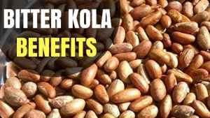 Health Benefits Of Bitter Kola/Garcinia Kola