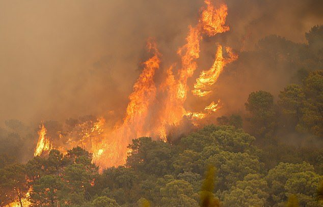 Firefighter killed in a wildfire on Costa Del Sol as 1,000 forced to evacuate
