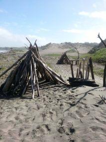 Sand Dunes_Scenery (9)