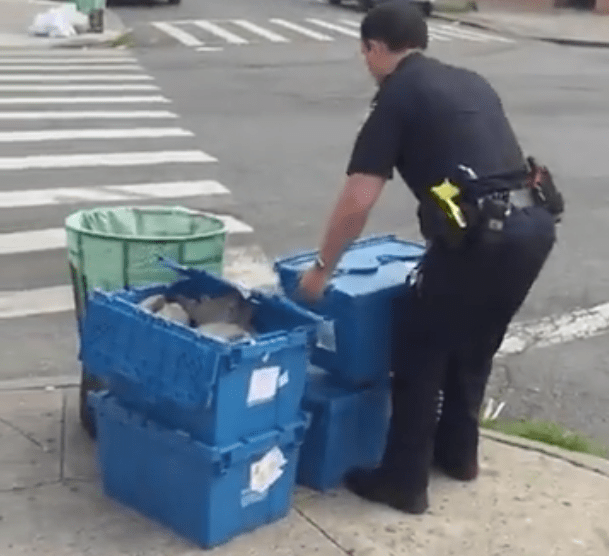 NYPD officers discover ANTIFA brick cache on Brooklyn street corner