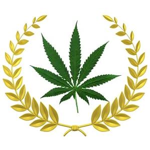 Best Marijuana Dispensaries