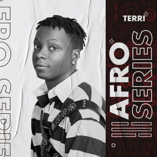 Terri Afro Series