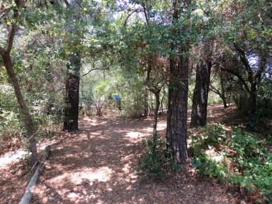 Trail14009