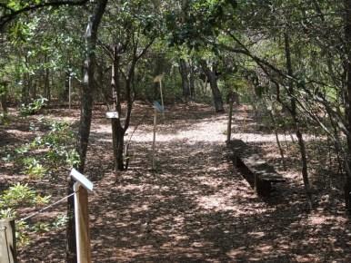 Trail14011