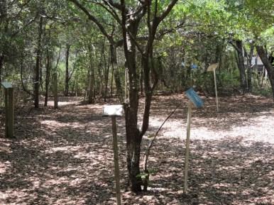 Trail14013