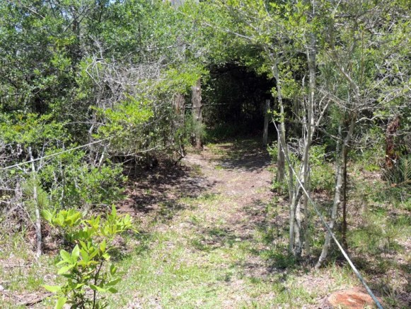 Trail14028