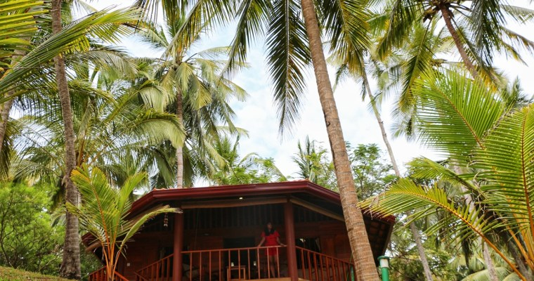 Palm Paradise Cabanas & Villas: Making Beautiful Memories in Tangalle