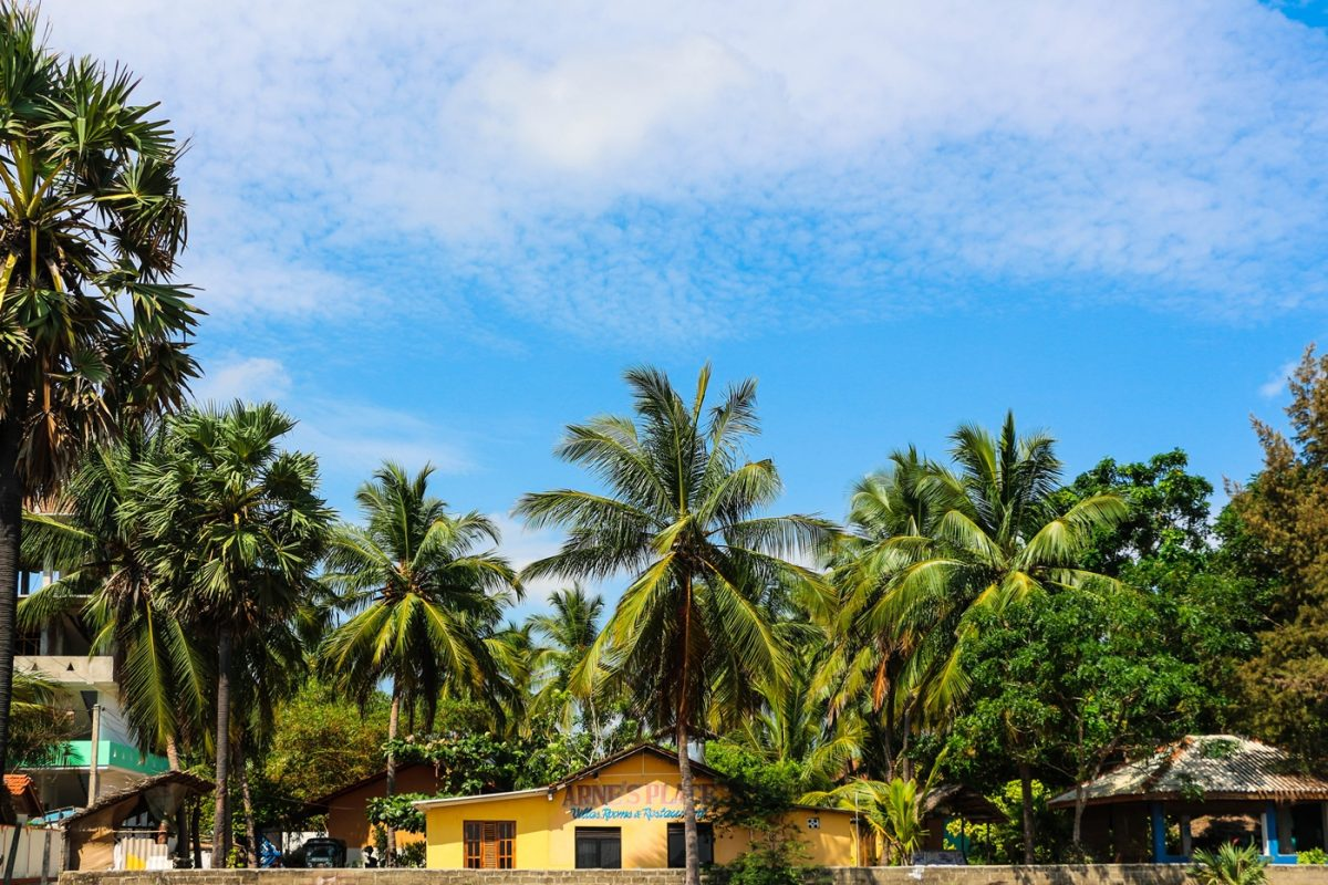 10 Things You Can Do in Arugam Bay Beside Surfing