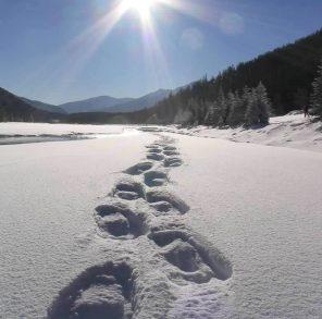 snowshoeing_tracks_lg