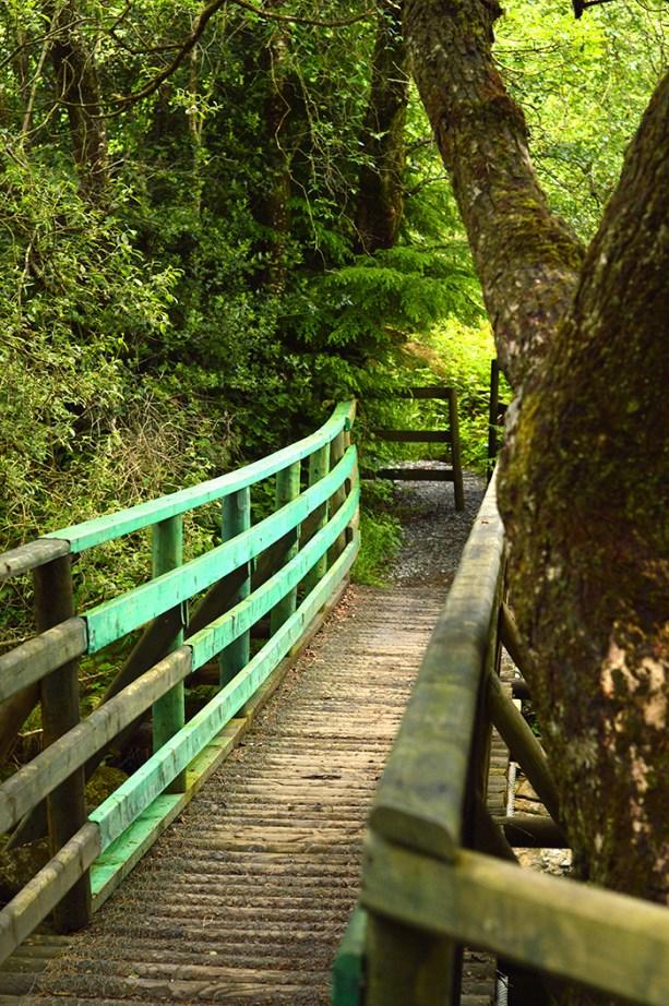 The Wicklow Way, Ireland // Nattie on the Road
