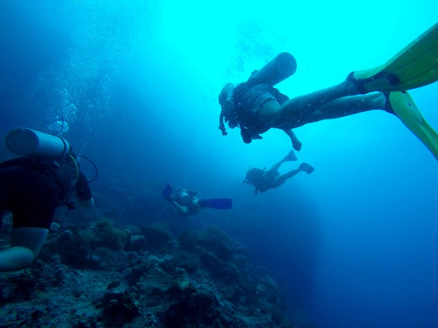 learning to scuba dive in Koh Tao