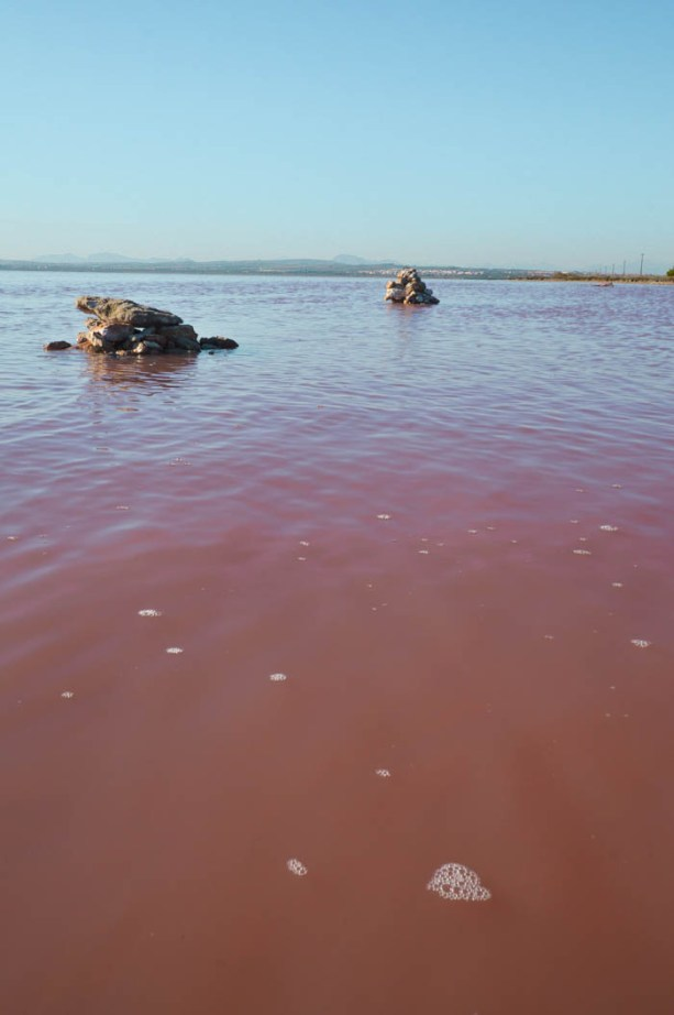 Pink Lake, Torrevieja Spain