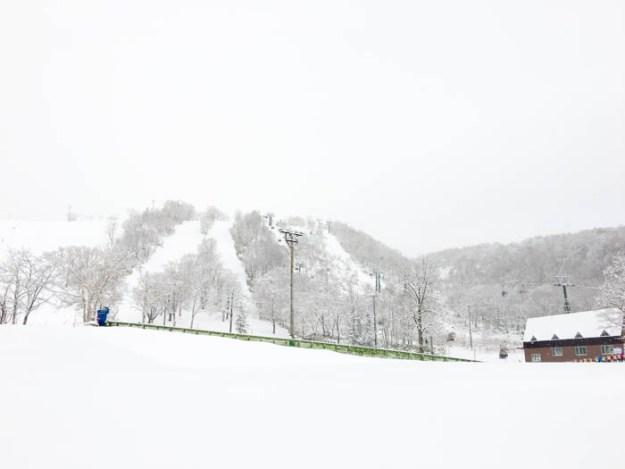 Annupuri ski area Niseko Japan