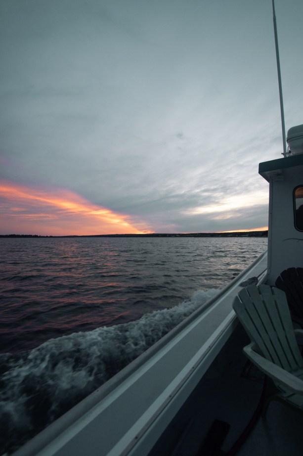 sunset boat rides