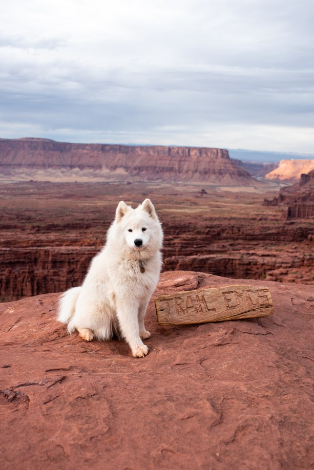 Dog Friendly Hikes in Moab - Fisher Towers