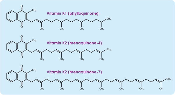 Image result for Vitamin K1 K2