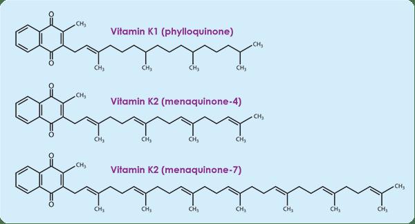 Image result for Vitamin K1 K2