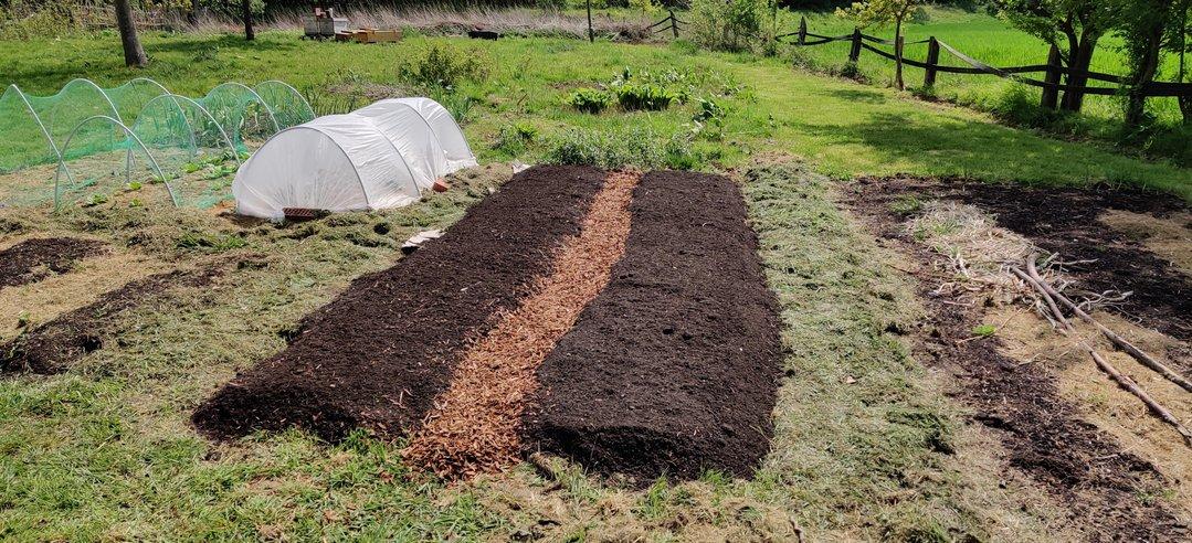 No Dig – Ein Gemüsebeet anlegen ohne Umgraben