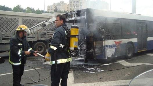 bus-72213__340