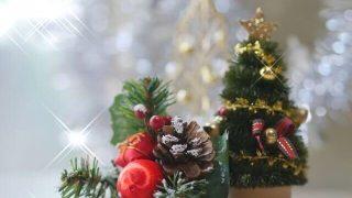小さなクリスマスツリーの写真