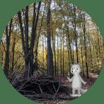 Wohnen im Wald