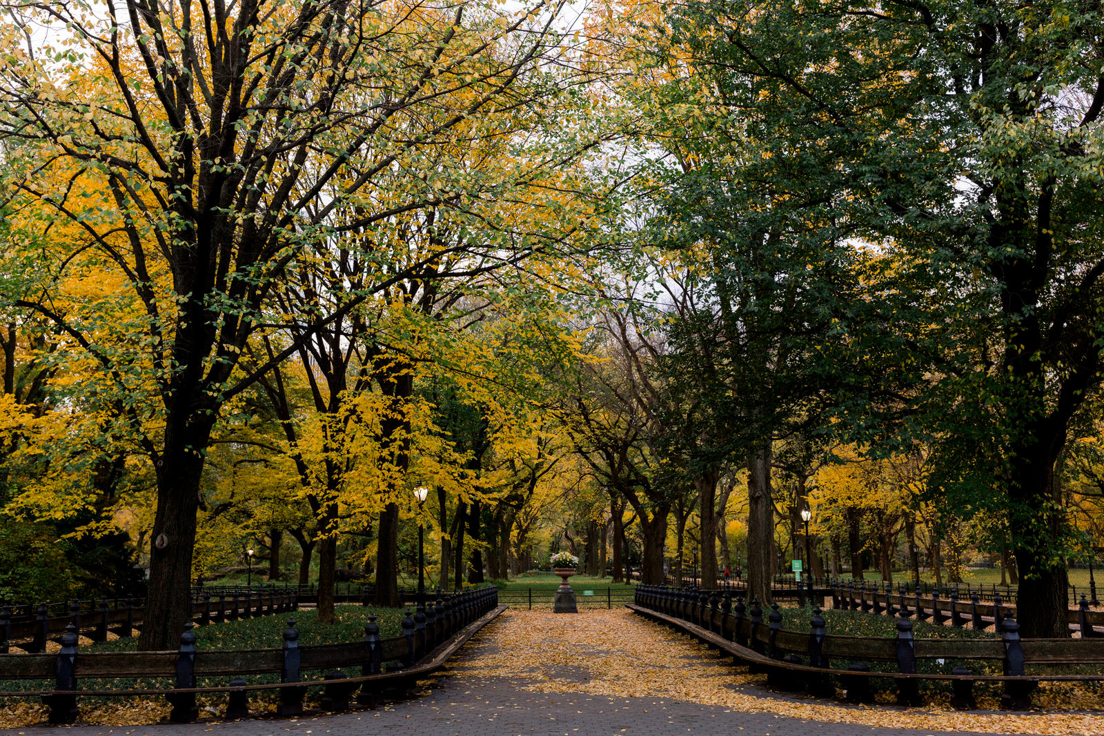 The Literary Walk and The Mall in Central Park during the Fall