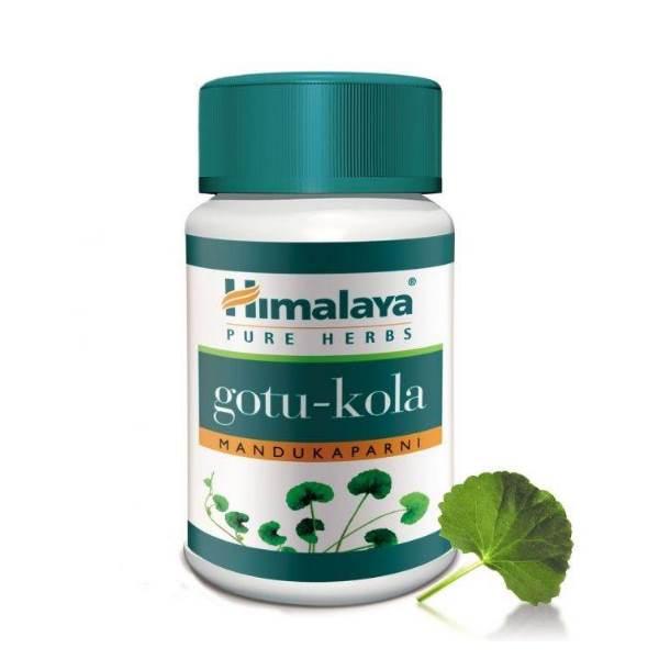 GOTU-KOLA - for normal cognitive function, memory x60caps