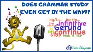 Conscious Grammar Study
