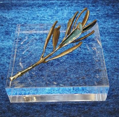 paperweight plexiglass 8_8_2 olive tree brass patina