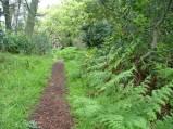 Greentrail (Highland)