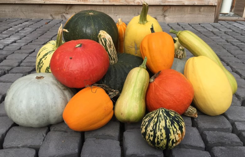 Pumpkin Shower Gel Ingredients