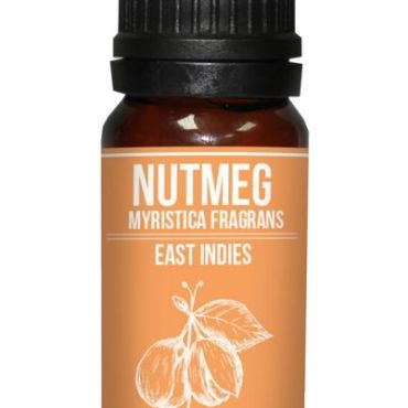 Nutmeg Essential Oil Myristica fragrans properties and buy online