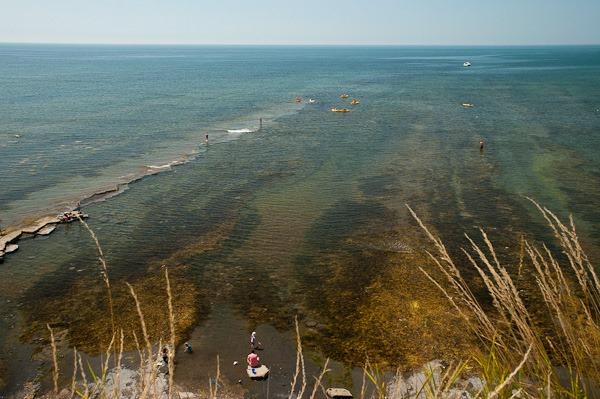 Kimmeridge Bay home to the Purbeck Marine Wildlife  Reserve