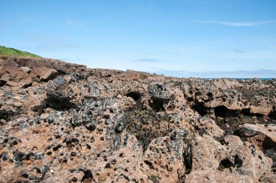 Pockmarked rocks