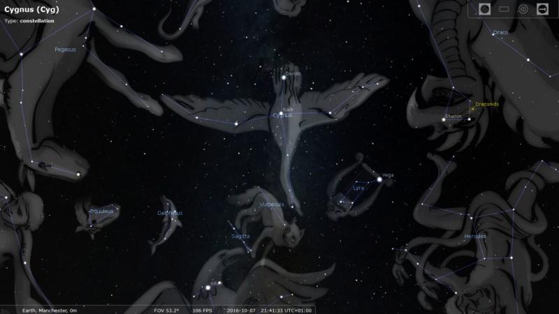"Cygnus ""The Swan"""
