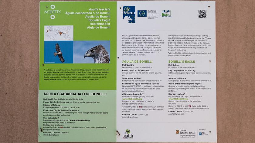 Bonelli's Eagle leaflet