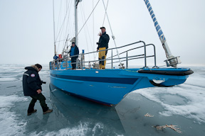 Steve returns to the ship after checking a seal carcass