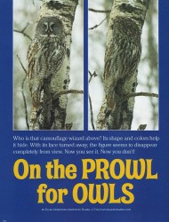 Cover of 2008 March National Wildlife: On The Prowl for Owls